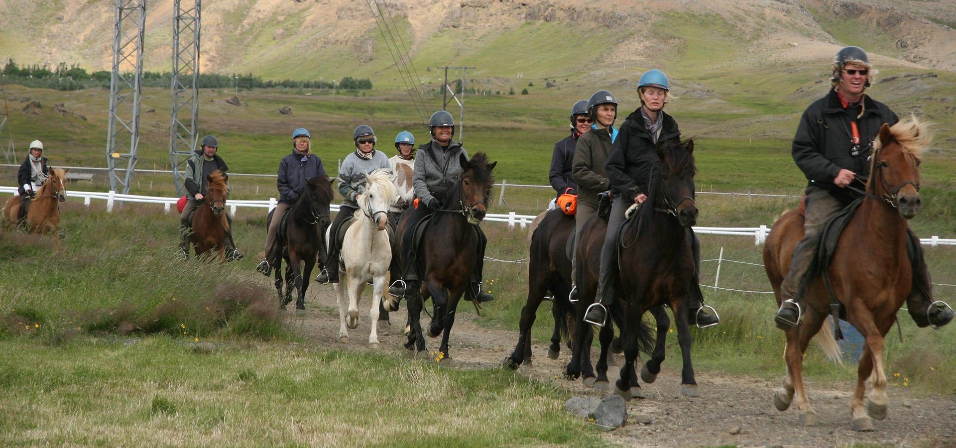 Horse Riding & Gullfoss, Geysir & Þingvellir - Golden Circle Iceland